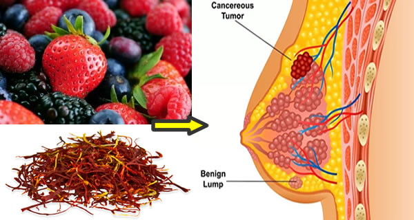 Top 13 Super Healthy Foods That Fight Breast Cancer
